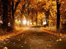 őszi út4
