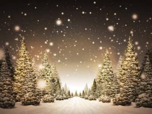 karácsonyi havas