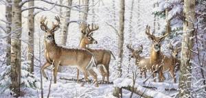 Woodland Winter 46 x 25 cm